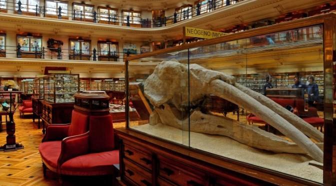 Museo Geominero